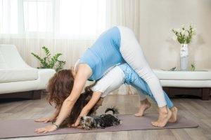 Γιόγκα μετά την Εγκυμοσύνη - Yoga House