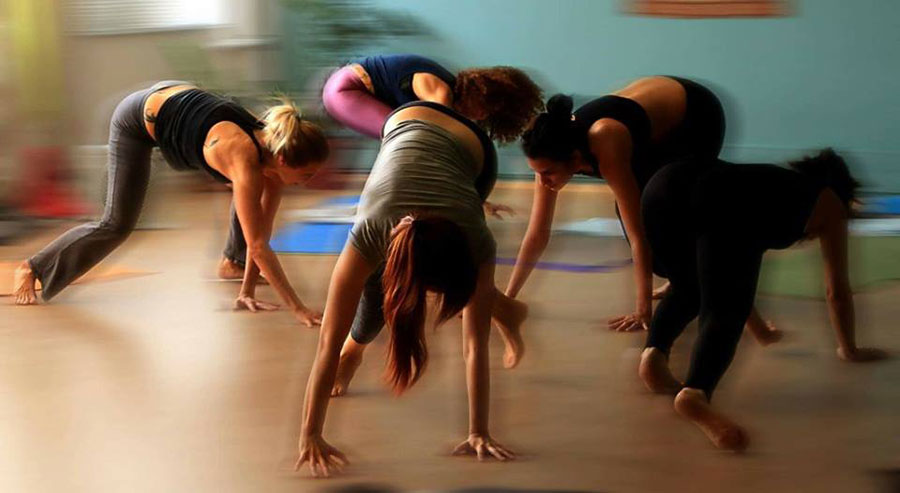 Εκπαίδευση: Οργανική Κίνηση & Vinyasa